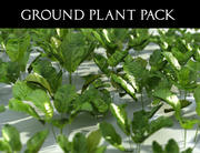 Ground Plant Pack 3d model
