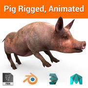 pig Rigged, Animated 3d model