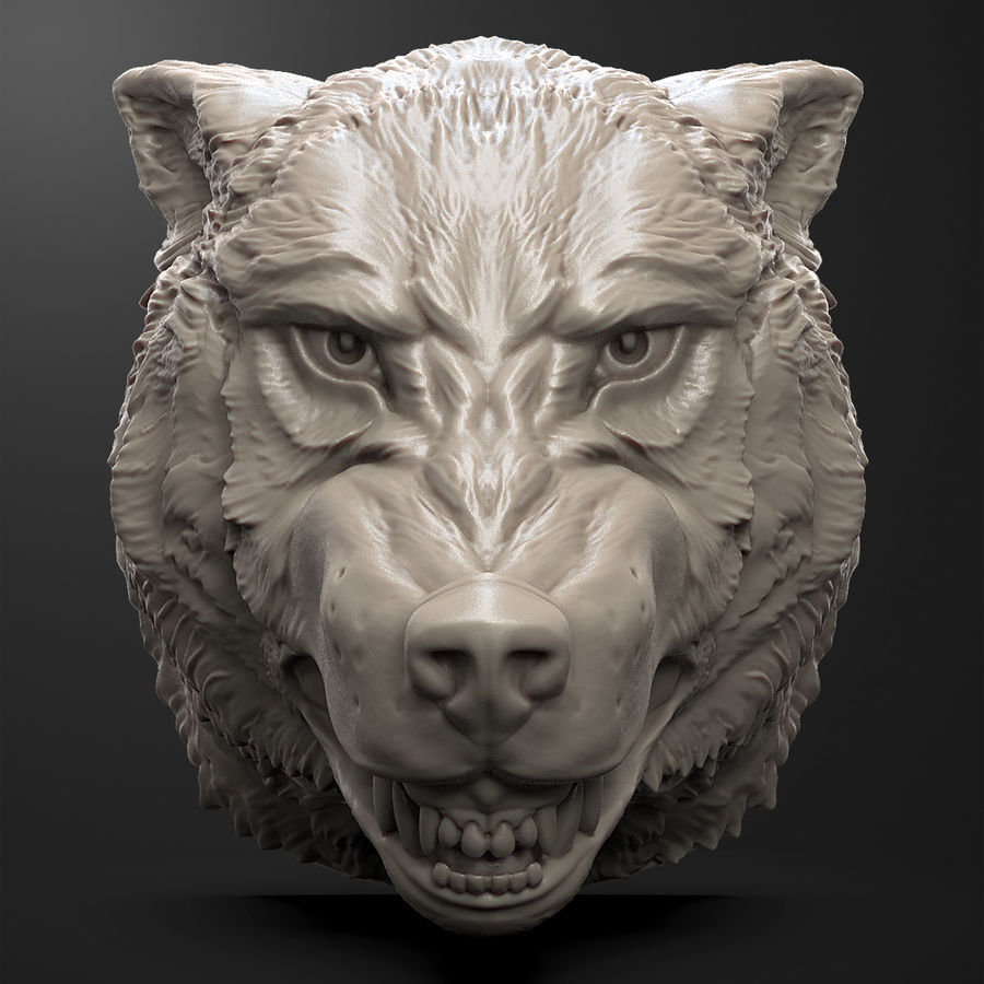 Testa di lupo royalty-free 3d model - Preview no. 2