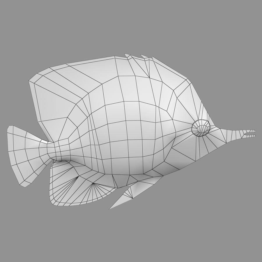 Aquarium Fish Collection Low Poly royalty-free 3d model - Preview no. 54