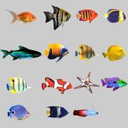 Colección de peces de acuario Low Poly modelo 3d