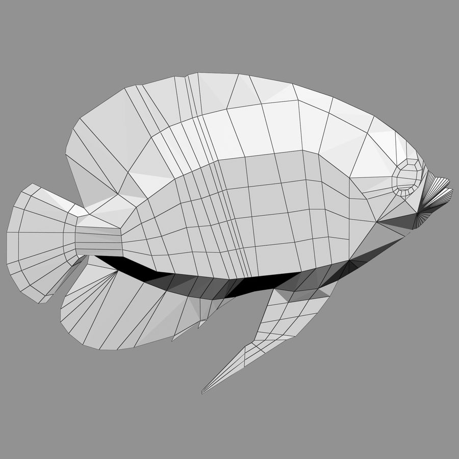 Aquarium Fish Collection Low Poly royalty-free 3d model - Preview no. 51