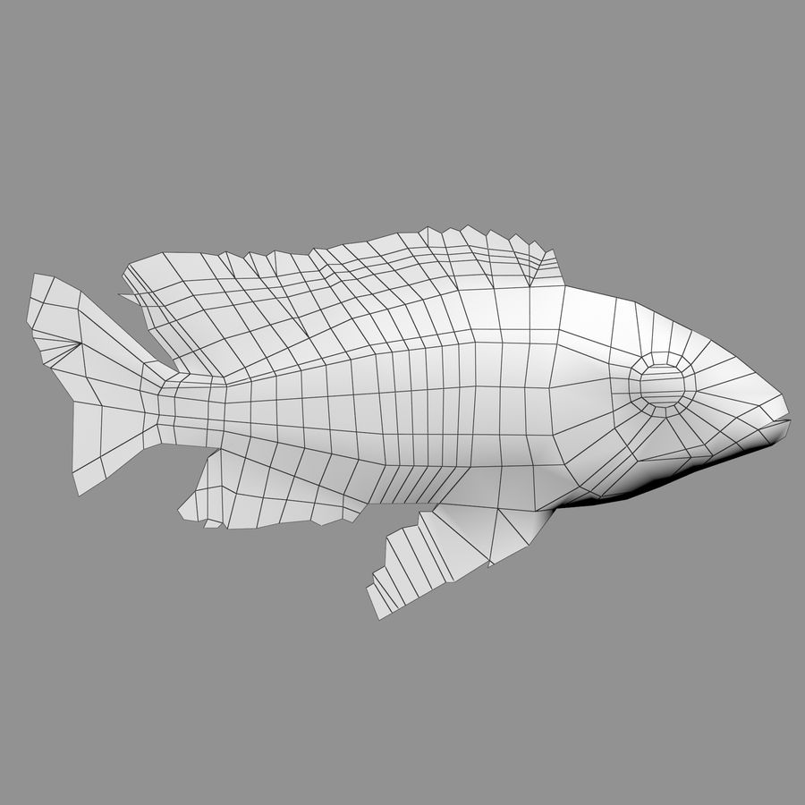 Aquarium Fish Collection Low Poly royalty-free 3d model - Preview no. 60