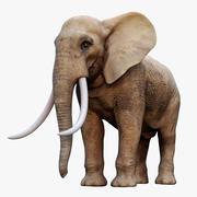 코끼리 장비 3d model