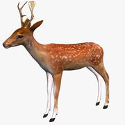 Cervo basso poli 3d model
