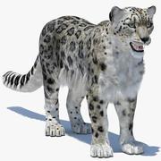 Snow Leopard 2 (polygonalt hår) 3d model