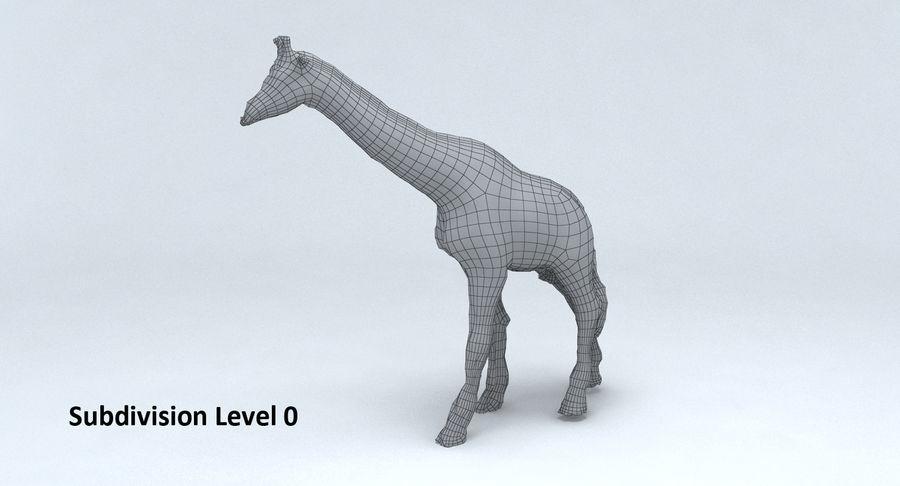 Giraffe royalty-free 3d model - Preview no. 12