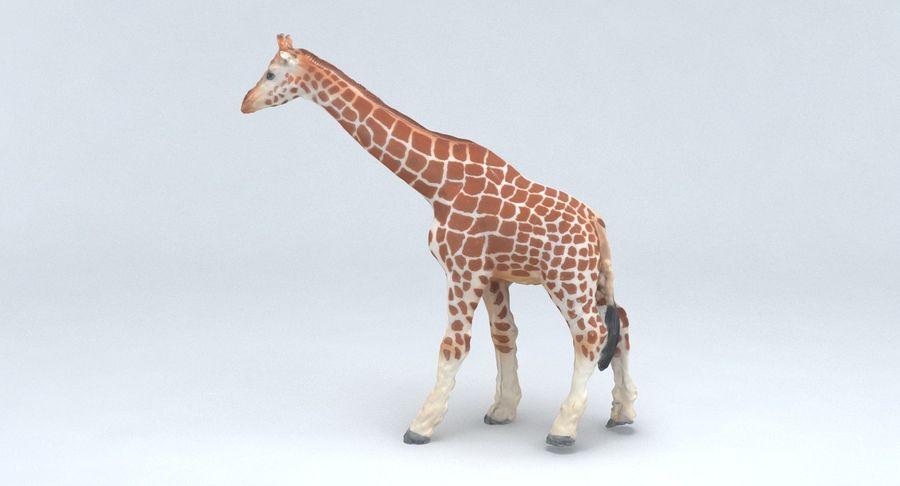 Giraffe royalty-free 3d model - Preview no. 11