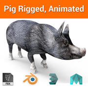 Black pig Rigged, Animated model 3d model