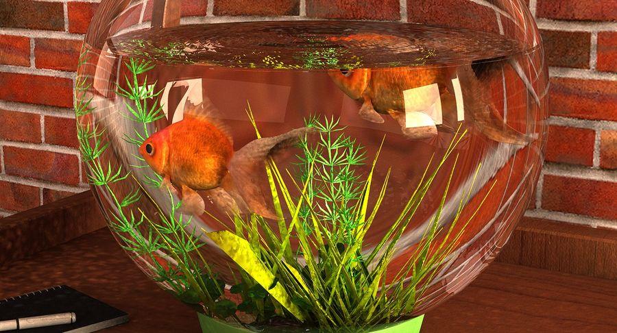 Gold Fish Aquarium Animated royalty-free 3d model - Preview no. 6