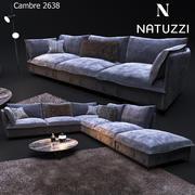 Canapé de style moderne, NATUZZI Cambre 2638 3d model