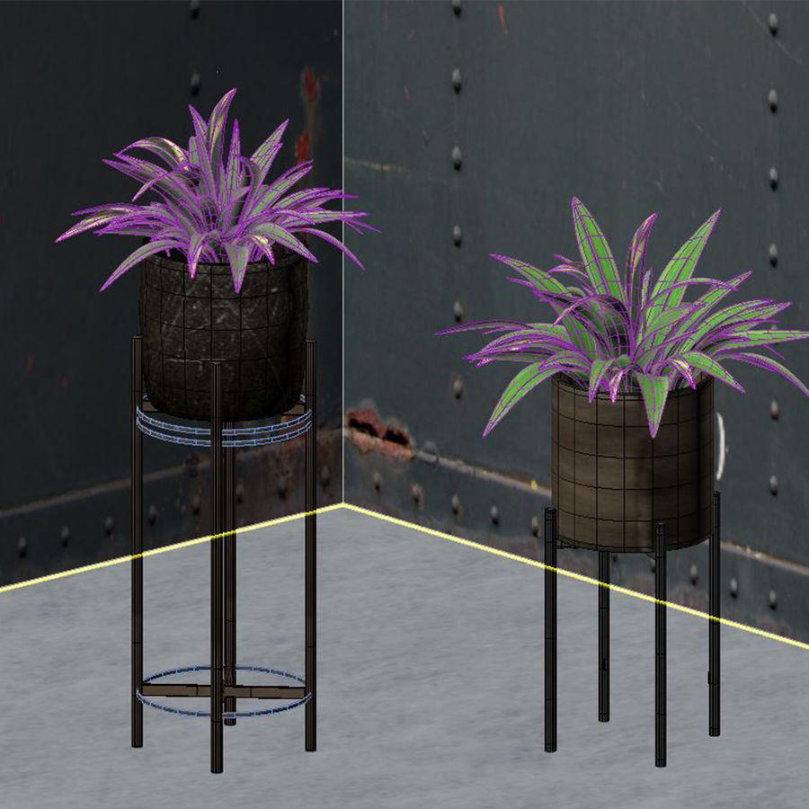 Rośliny w doniczce (ze stojakiem) royalty-free 3d model - Preview no. 3