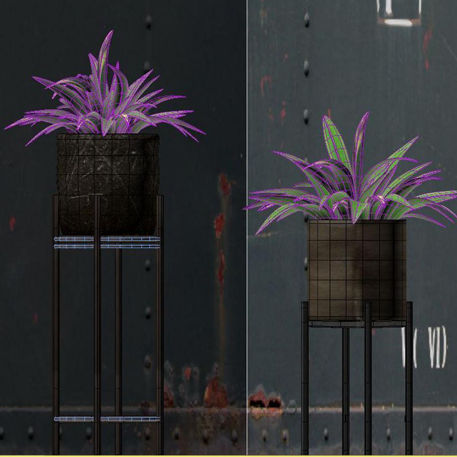 Rośliny w doniczce (ze stojakiem) royalty-free 3d model - Preview no. 4