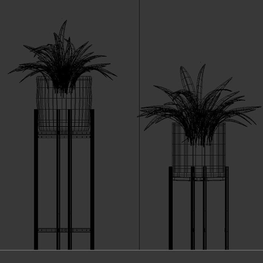 Rośliny w doniczce (ze stojakiem) royalty-free 3d model - Preview no. 5