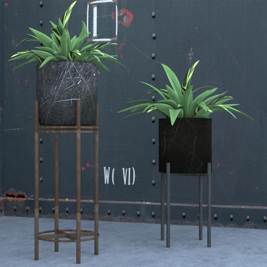Rośliny w doniczce (ze stojakiem) royalty-free 3d model - Preview no. 2