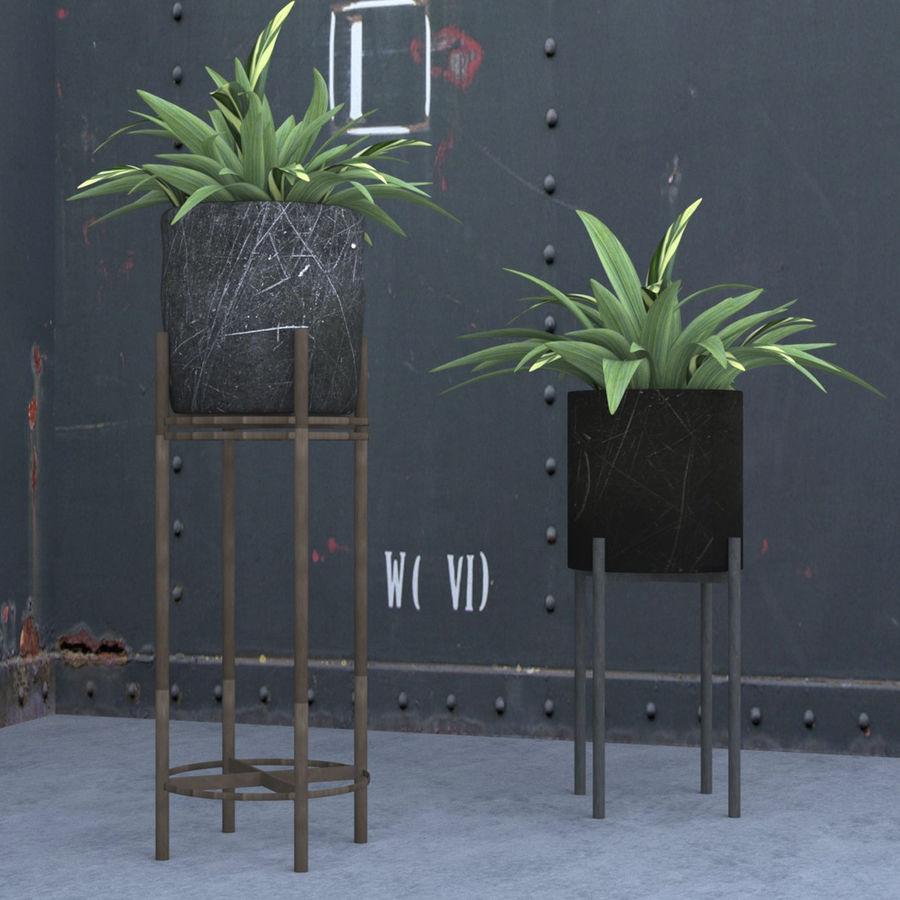 Rośliny w doniczce (ze stojakiem) royalty-free 3d model - Preview no. 1