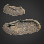 3D escaneado naturaleza bosque cosas 010 modelo 3d