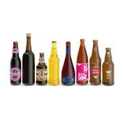 Bierflaschen 3d model