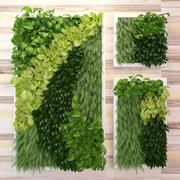 Grüne Wand 3d model