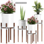 bitkiler 130 ayarla 3d model