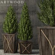 Plants collection 64 3d model