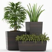 plants set 136 3d model