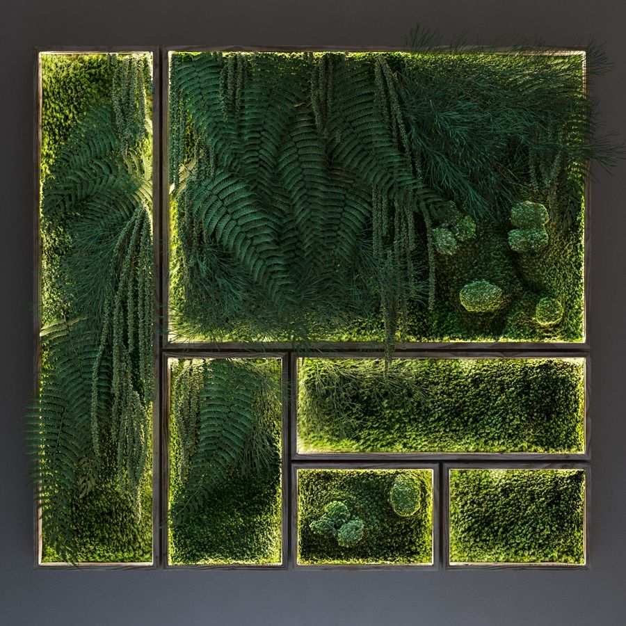 Moss and fern fytowall royalty-free 3d model - Preview no. 2