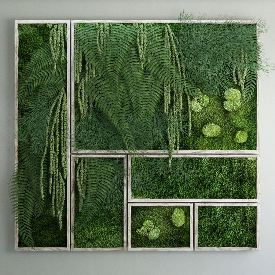 Moss and fern fytowall royalty-free 3d model - Preview no. 1