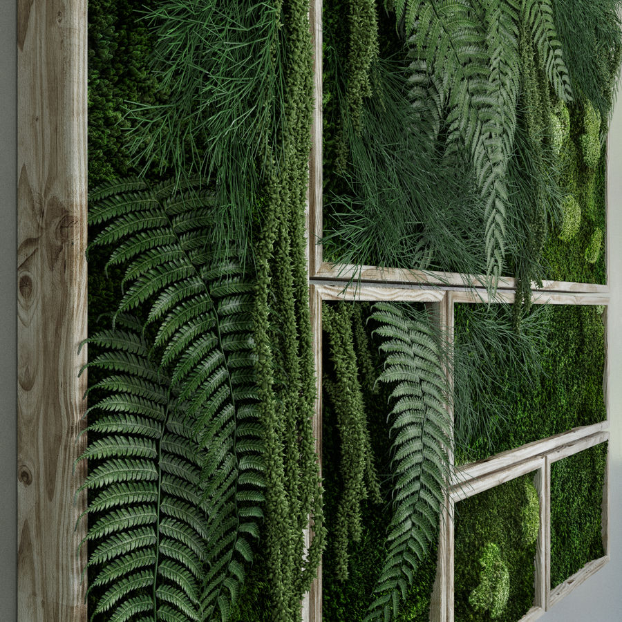 Moss and fern fytowall royalty-free 3d model - Preview no. 4