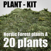 nordic forest plants A collection 3d model