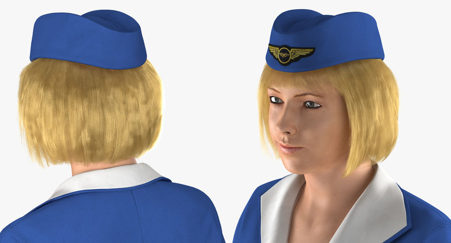 Airline Pilot and Stewardess 3D Models Collection royalty-free 3d model - Preview no. 17