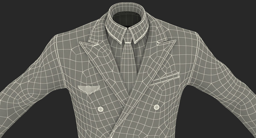 Airline Pilot and Stewardess 3D Models Collection royalty-free 3d model - Preview no. 27