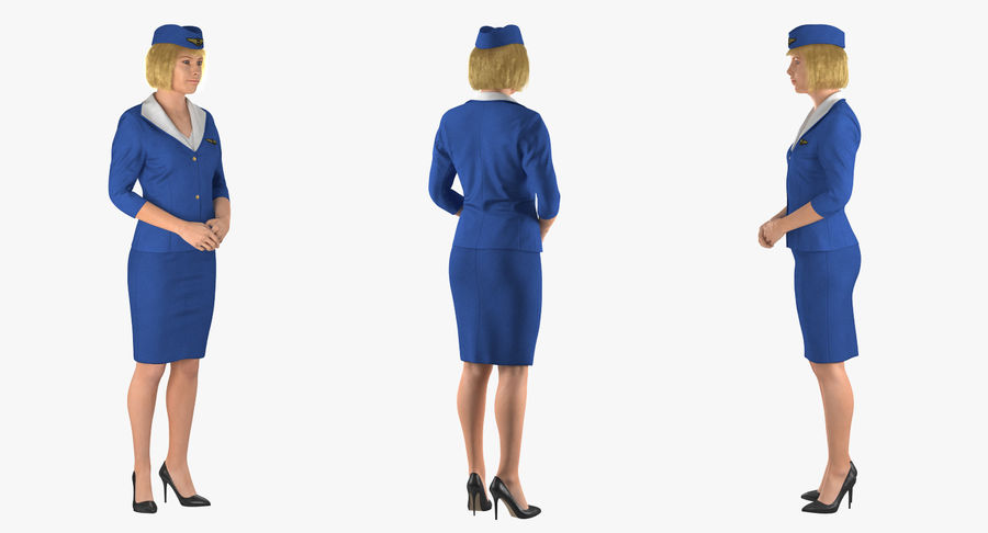 Airline Pilot and Stewardess 3D Models Collection royalty-free 3d model - Preview no. 13