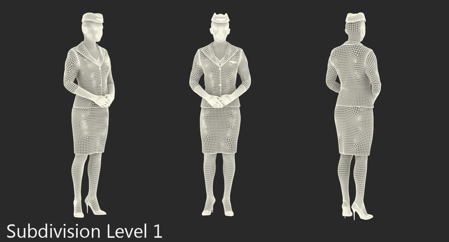 Airline Pilot and Stewardess 3D Models Collection royalty-free 3d model - Preview no. 20