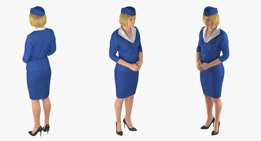 Airline Pilot and Stewardess 3D Models Collection royalty-free 3d model - Preview no. 15