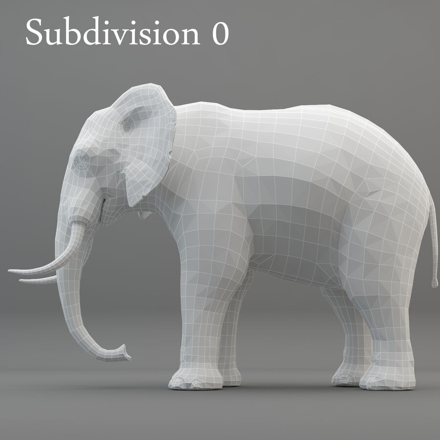 Rigged Elephant royalty-free 3d model - Preview no. 11