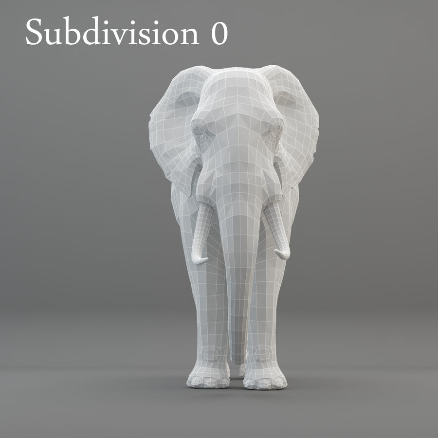 Rigged Elephant royalty-free 3d model - Preview no. 12