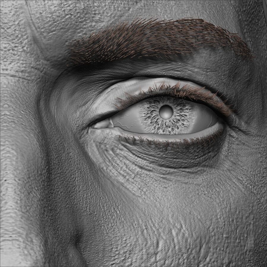 Caucasian Man Head royalty-free 3d model - Preview no. 13