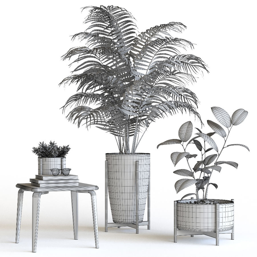 Plant set royalty-free 3d model - Preview no. 6