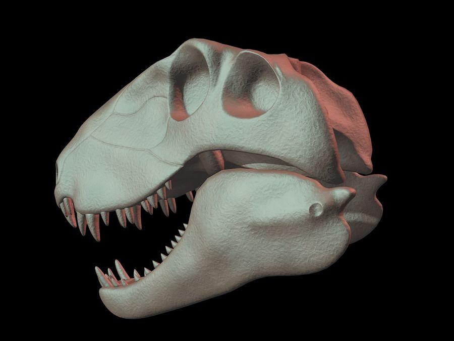 Czaszka Dimetrodon royalty-free 3d model - Preview no. 2