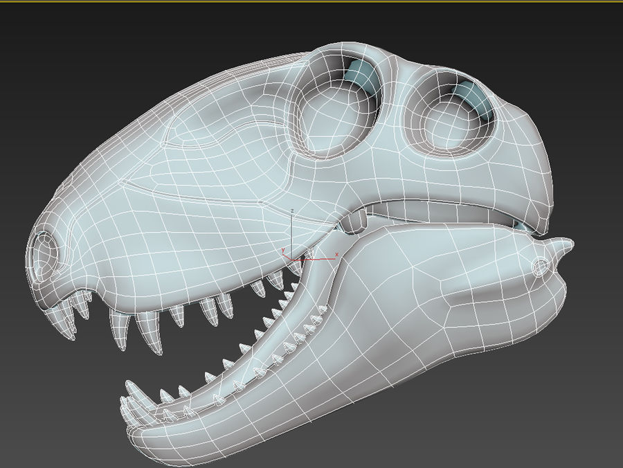 Czaszka Dimetrodon royalty-free 3d model - Preview no. 5
