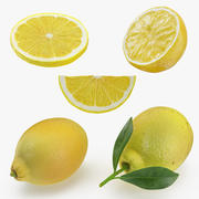 Lemon Collection 2 3d model