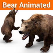 Bear low poly animated 3d model