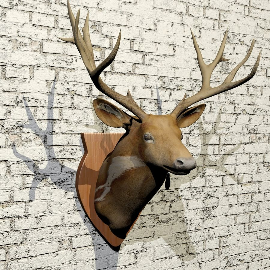 Taxidermie cerf royalty-free 3d model - Preview no. 3