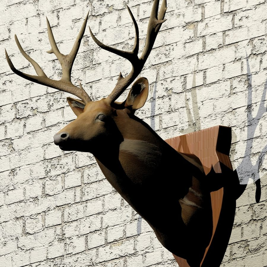 Taxidermie cerf royalty-free 3d model - Preview no. 7