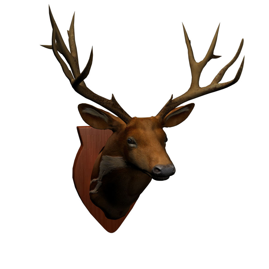 Taxidermie cerf royalty-free 3d model - Preview no. 12
