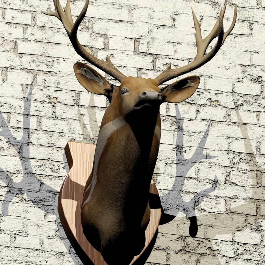 Taxidermie cerf royalty-free 3d model - Preview no. 6