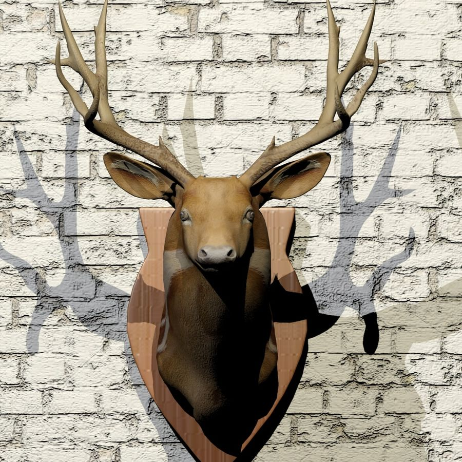 Taxidermie cerf royalty-free 3d model - Preview no. 5