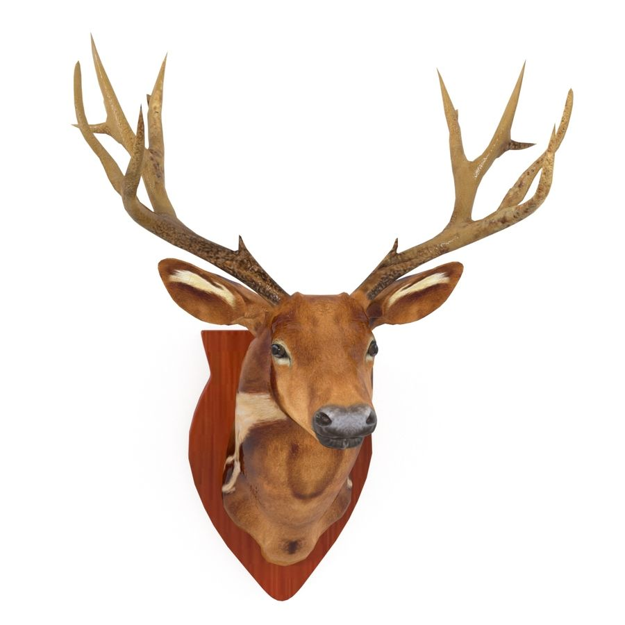 Taxidermie cerf royalty-free 3d model - Preview no. 1