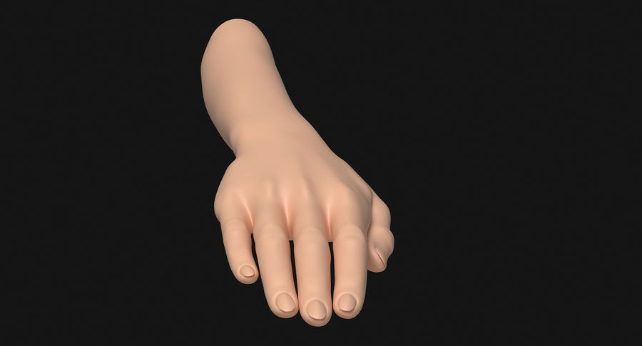 Female Arm A (Pose C) royalty-free 3d model - Preview no. 3